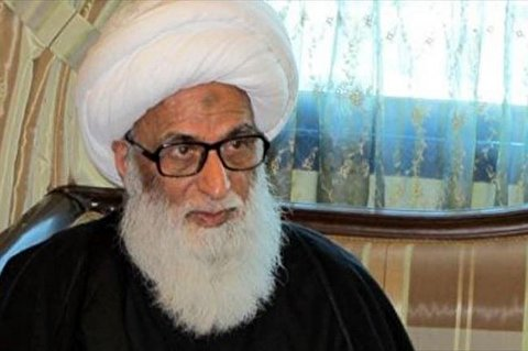 Ayatollah al-Najafi called for the youth to adhere to Islamic culture